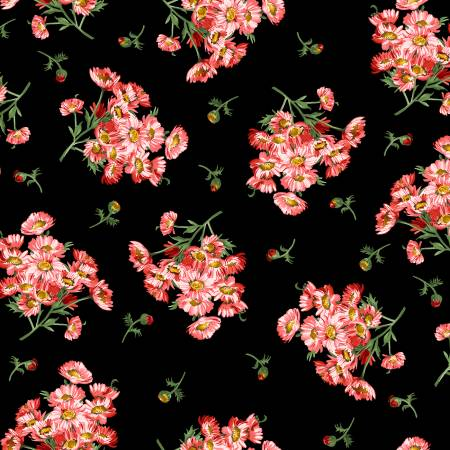 Black Daisy Bouquets