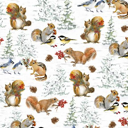 Multi Squirrels & Birds
