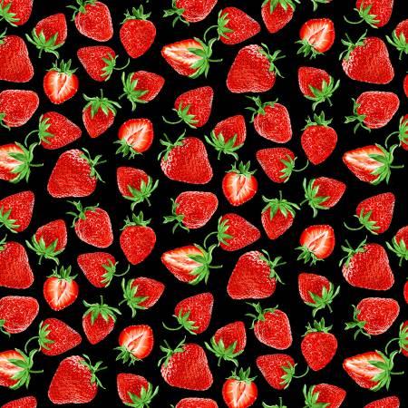 KAN- Strawberry Fields Forever Strawberry Festival Black