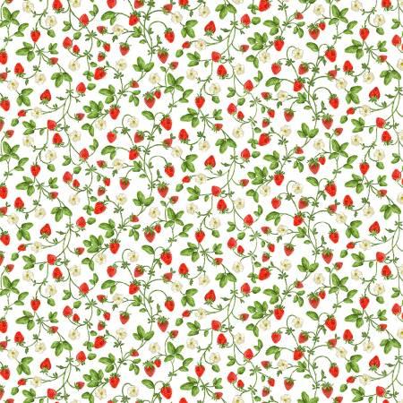 White Sweet Strawberries