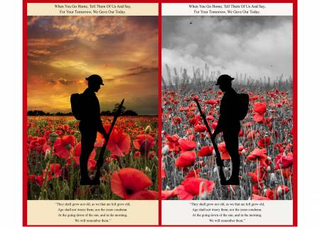 Poppies by Lewis and Irene #A558- Remembrance Panel