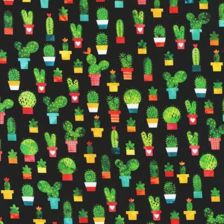 Black Cacti