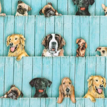 Sweet Dog & Pup Fence