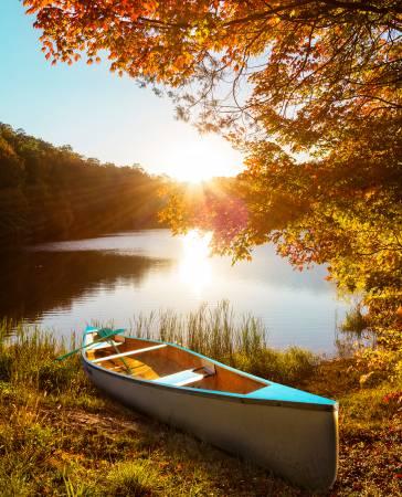 Canoe Digital Panel 36in