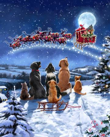 Christmas Winter Meeting Panel 36in