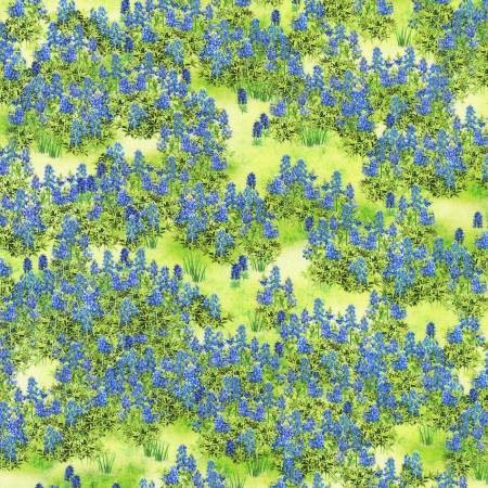 Country Texas in Bloom/ Green w/ Bluebonnets