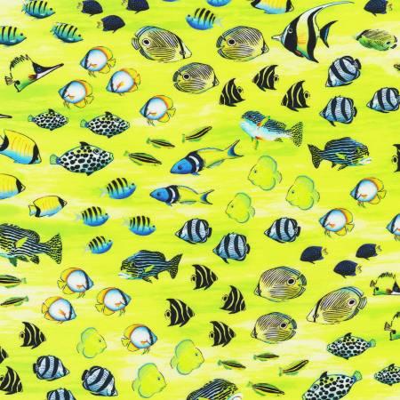Coral Canyon Sea Glass Fish Digitally Printed by Carolyn Steele