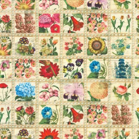 Vintage Library of Rarities Flowers Vintage