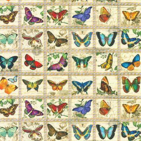 Vintage Library of Rarities Butterflies Vintage