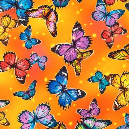 Fantastic Forest Butterflies sunshine