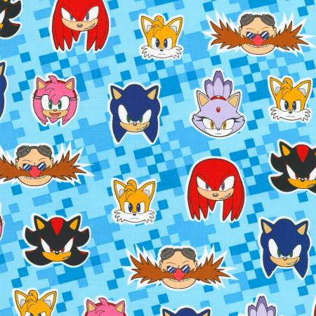 Blue Sonic the Hedgehog