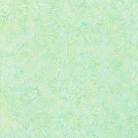 SMILE- Surf Tonga-B7533