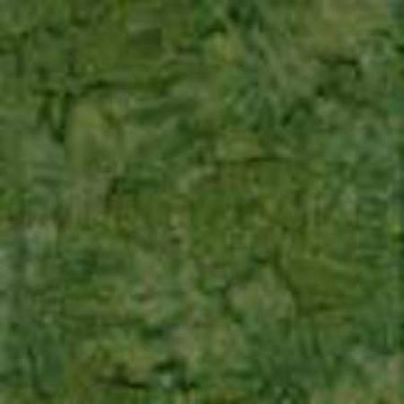 Holly Batik Texture