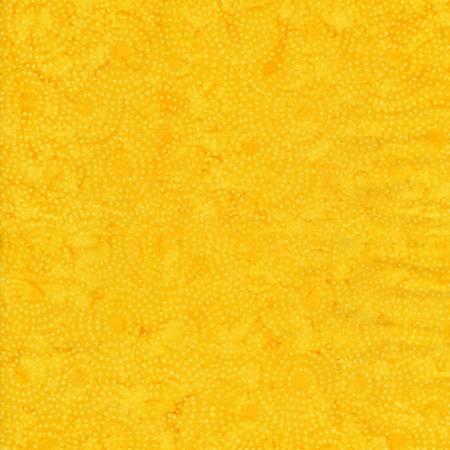Tonga Celebrity - Sun Circa Dot