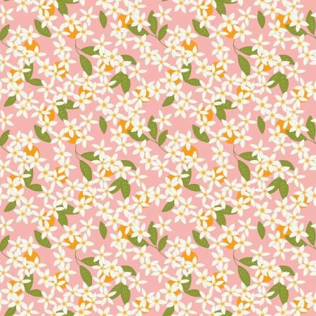 Grove Blossoms Grapefruit