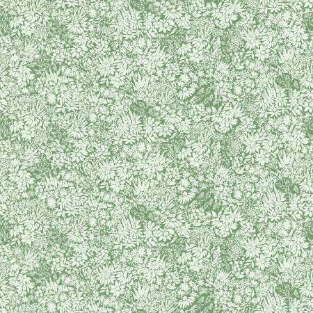 Rocky Mountain Wild Flowers Green