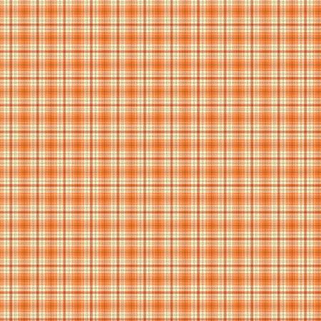 Adel in Autumn Plaid Orange