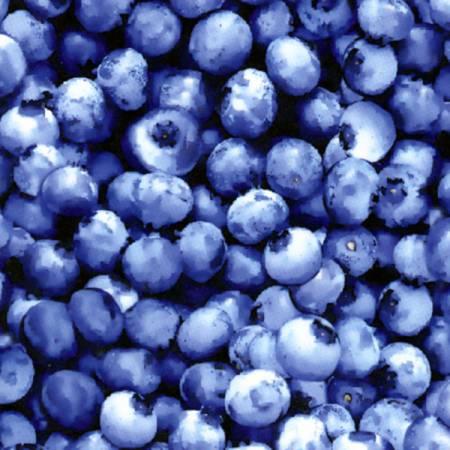 Blueberry Blueberries