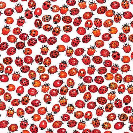 White Background Ladybugs All Over
