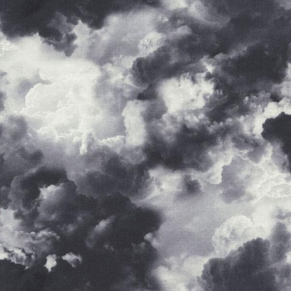 Cloud Grey Sky