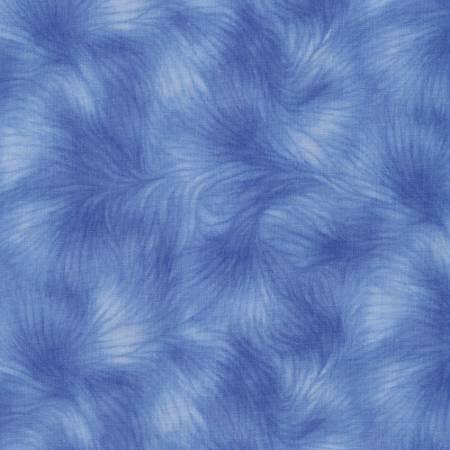 Blue Viola -