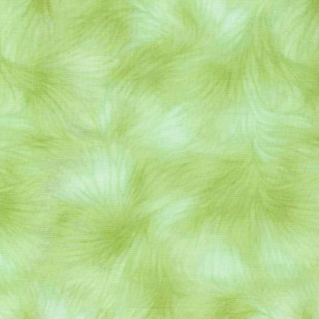 Viola-Celery 4459