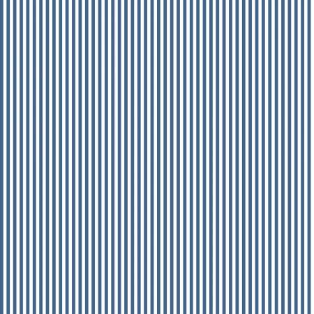 Stripe 1/8 Inch Color Denim