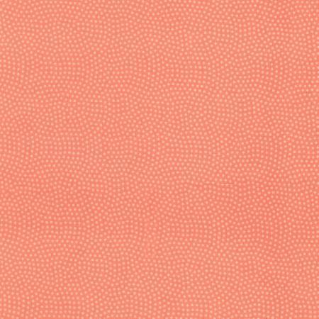 Salmon Spin TT082619