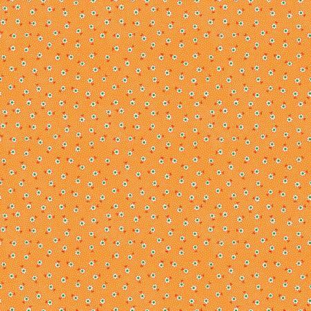 Toy Daisy Orange
