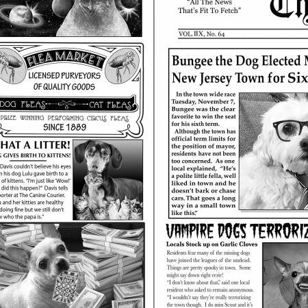 Newsprint Dog News C6704-News