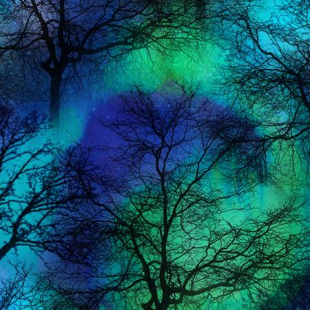 SPECIALTY FABRICS:  Northern Lights Trees on Cobalt:  Night Sky by Timeless Treasures