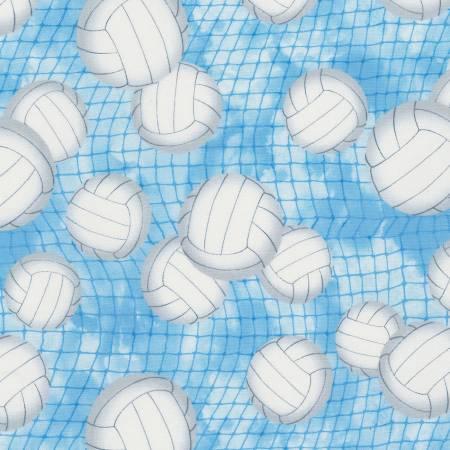 TIMELESS Blue Volleyball