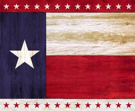 Fabric Timeless Treasures Texas Lone Star State 36in Panel