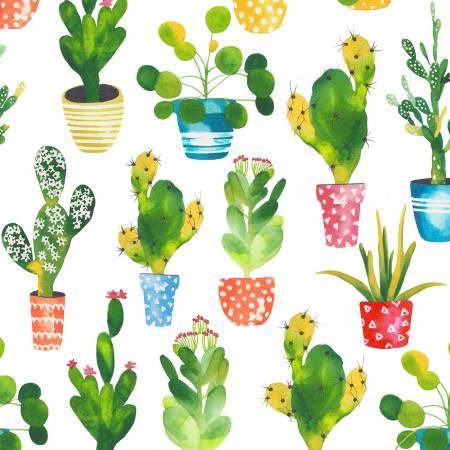 White Planted Cactus
