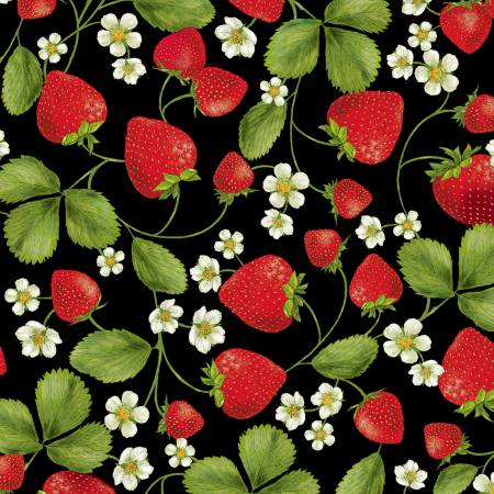 Black Strawberry Patch