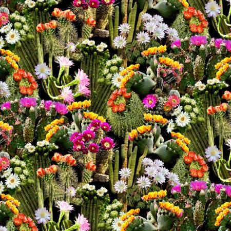 C7357 Cactus Multi