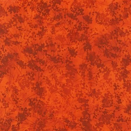 Orange Tonal C7412