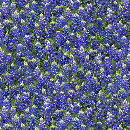 Timeless Treasures - Blue Bonnets Fabric Fleur-C7572 Blue Lupine