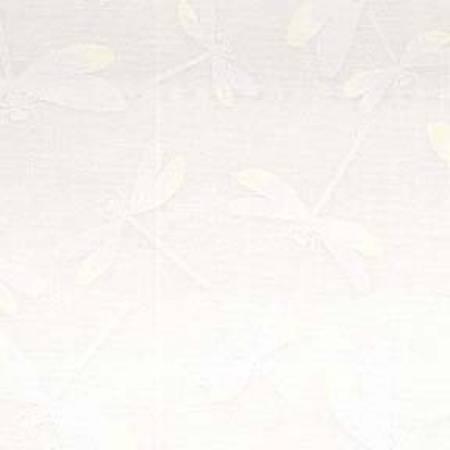 White/White Dragonflies