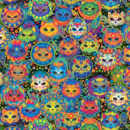Multi Pop Cats Packed