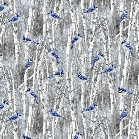 Blue Winter Blue Bird
