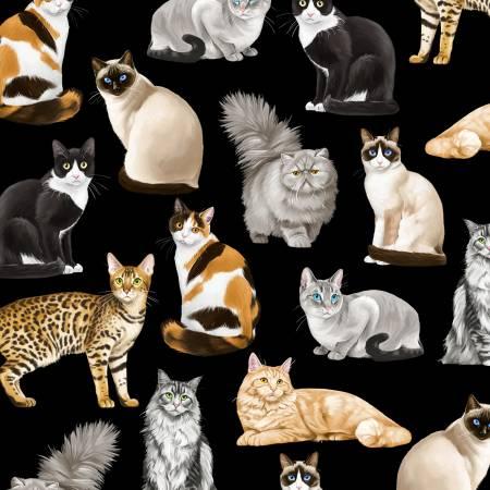 SPECIALTY FABRICS:  Feline Fancy Cats on Black by Timeless Treasures