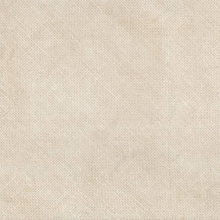 Winter Frost Wheat Burlap Textured Look