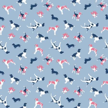 Fox Farm Dogs Blue