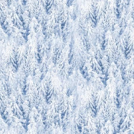 Winter Frost Blue Snowy Pine Trees