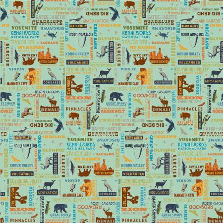 NATIONAL PARKS MOTIFS SEA GREEN C8784 by Riley Blake
