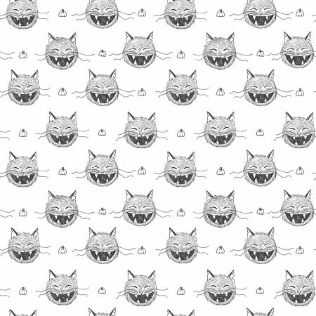 Scaredy Cat  c9411 White