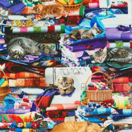 Timeless Treasures Cats & Dogs Cat-CD6878 Multi Cats on Quilts Digital
