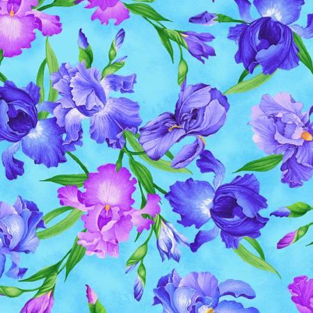 Allover Iris<br>MEADOW-CD7071 Blue