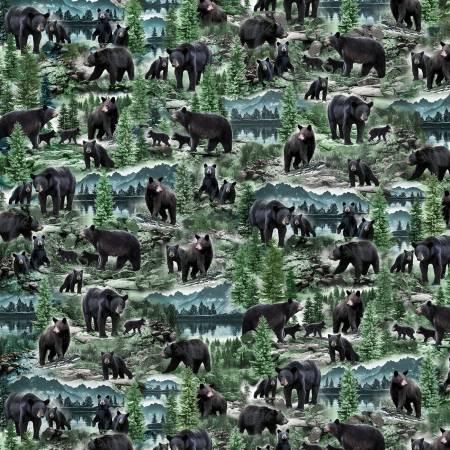 Timeless Treasures Black Bear - Nature-CD7563 Multi - Digital Print